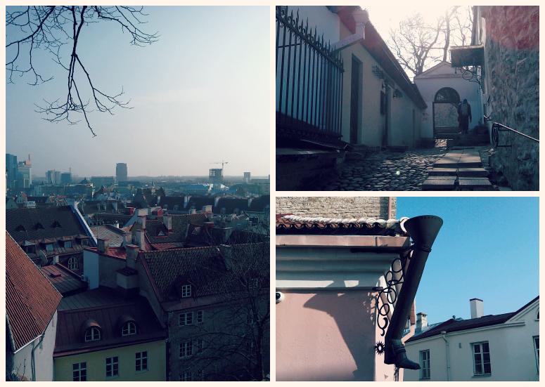 Таллинские красоты