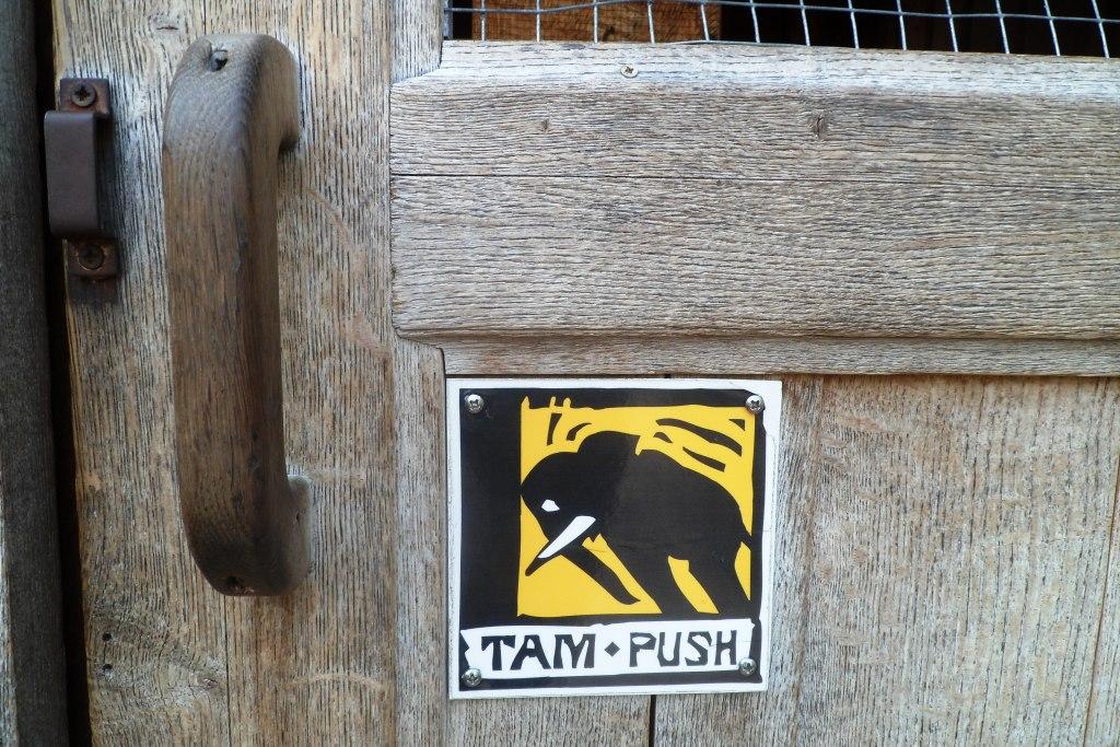Push, и будет вам счастье :)