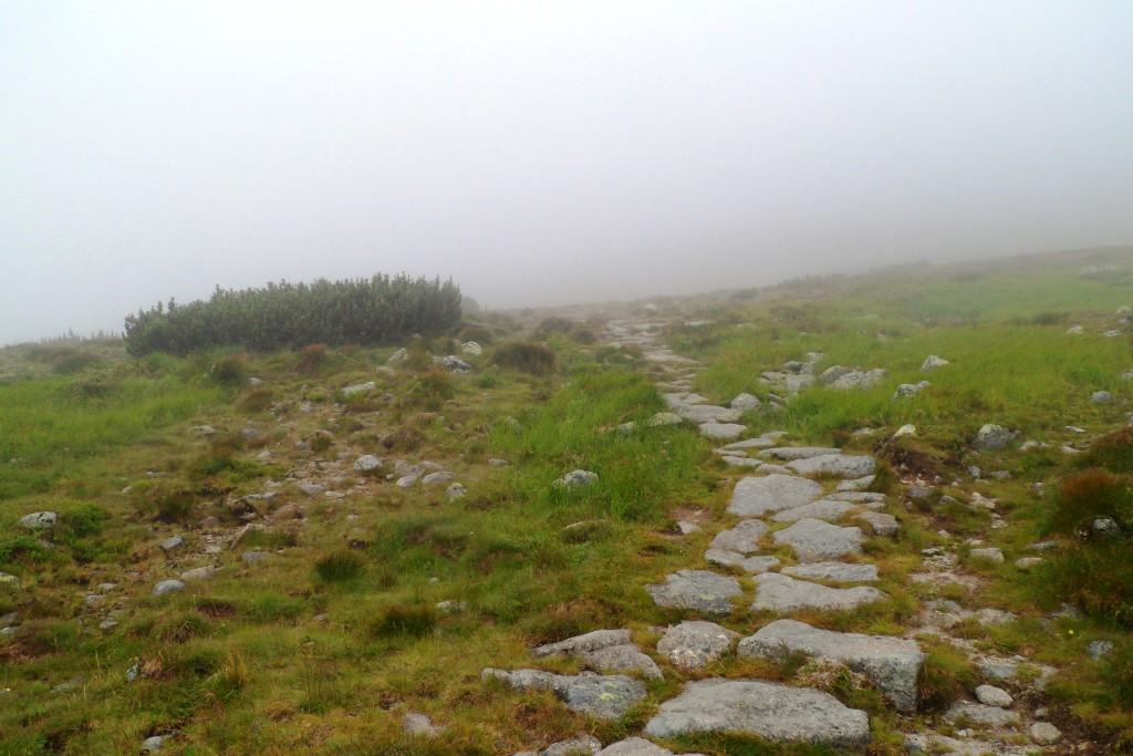 Тропа на гору Кривань