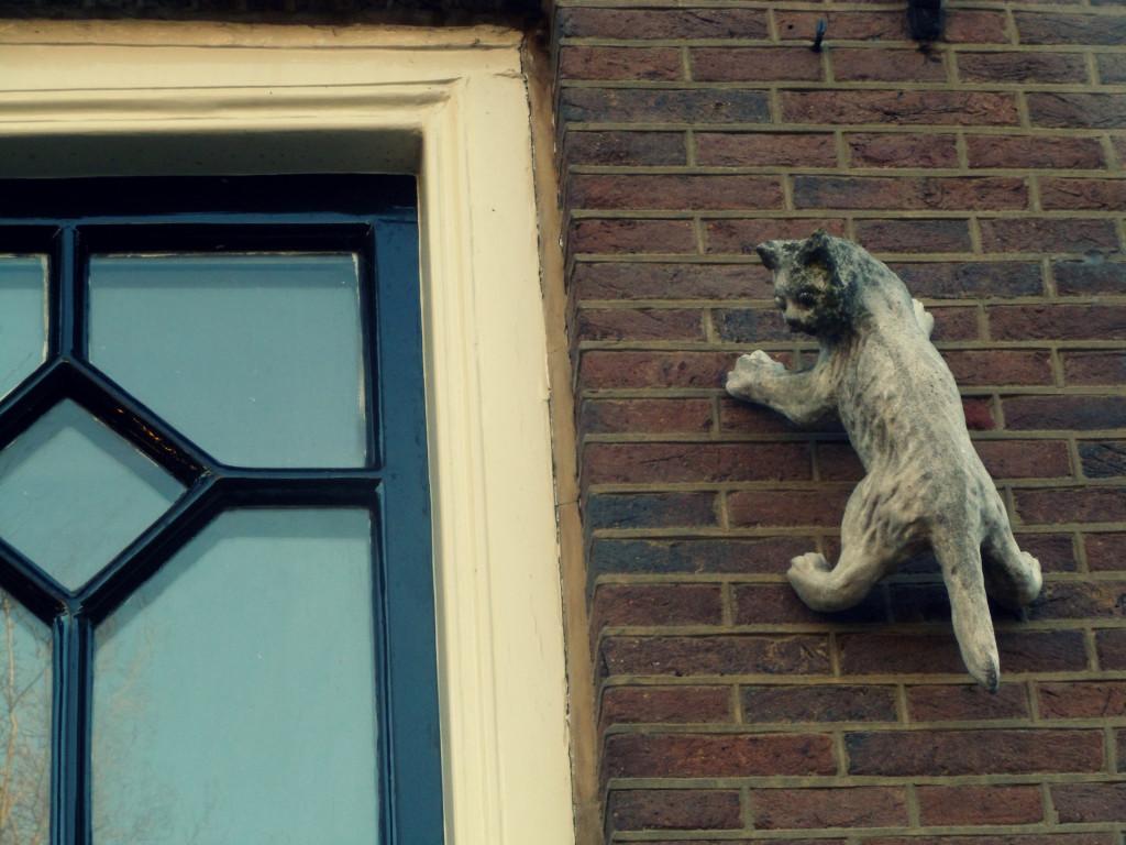 кот на стене дома в Амстердаме